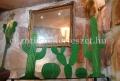 Kaktusz gömb